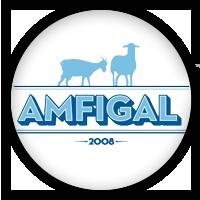 AMFIGAL